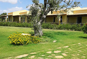 is solinas kite cottages holiday sardinia
